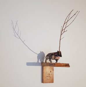 Marino Ficola - Rinoceronte